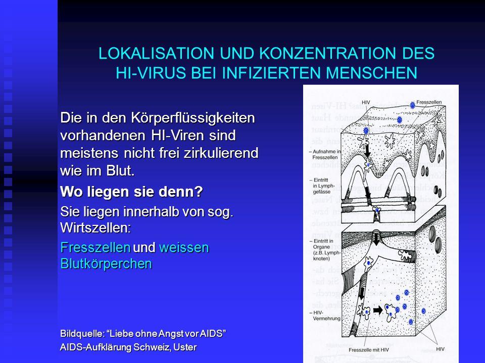 LOKALISATION UND KONZENTRATION DES HI-VIRUS BEI INFIZIERTEN MENSCHEN Die in den Körperflüssigkeiten vorhandenen HI-Viren sind meistens nicht frei zirk