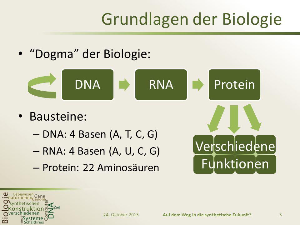 Grundlagen der Biologie Dogma der Biologie: Bausteine: – DNA: 4 Basen (A, T, C, G) – RNA: 4 Basen (A, U, C, G) – Protein: 22 Aminosäuren DNARNAProtein