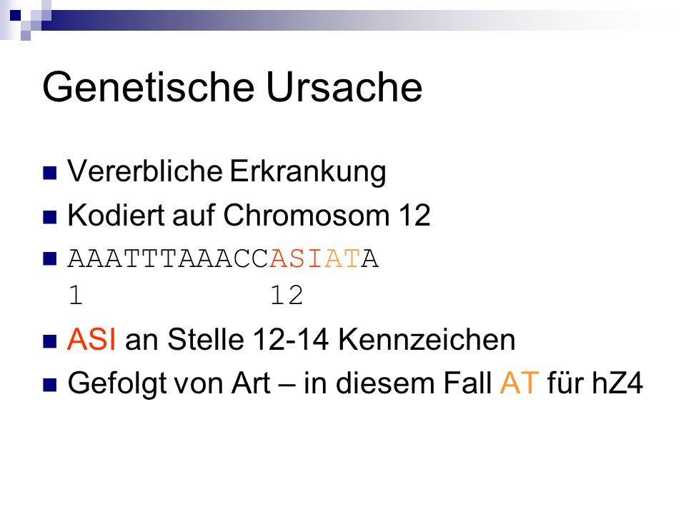 Genetische Ursache Vererbliche Erkrankung Kodiert auf Chromosom 12 AAATTTAAACCASIATA 1 12 ASI an Stelle 12-14 Kennzeichen Gefolgt von Art – in diesem