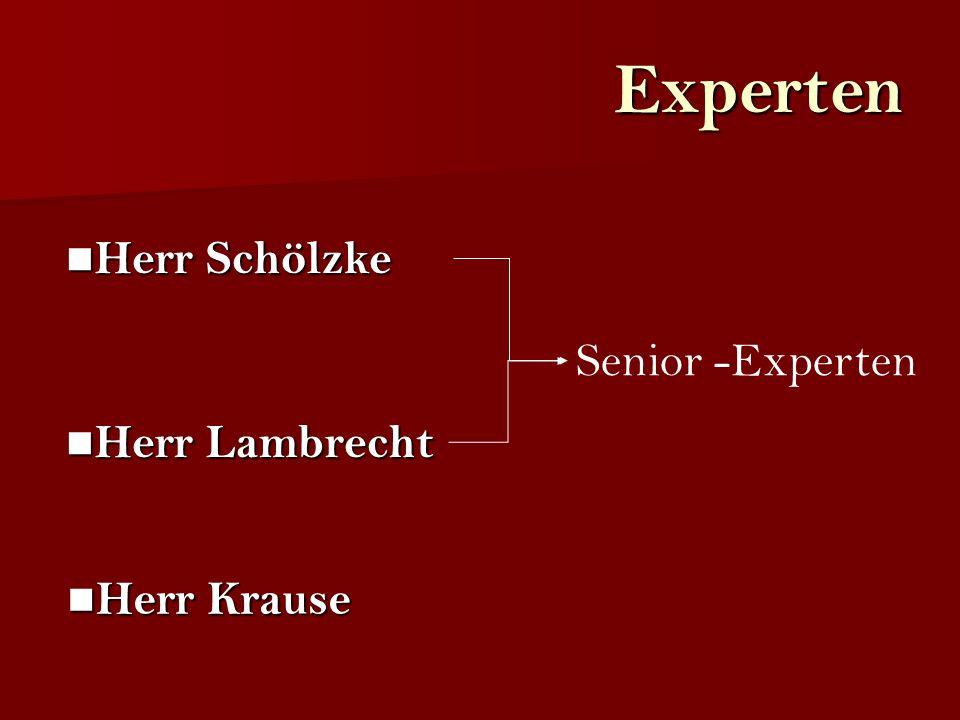 Experten Herr Lambrecht Herr Lambrecht Herr Schölzke Herr Schölzke Senior -Experten Herr Krause Herr Krause