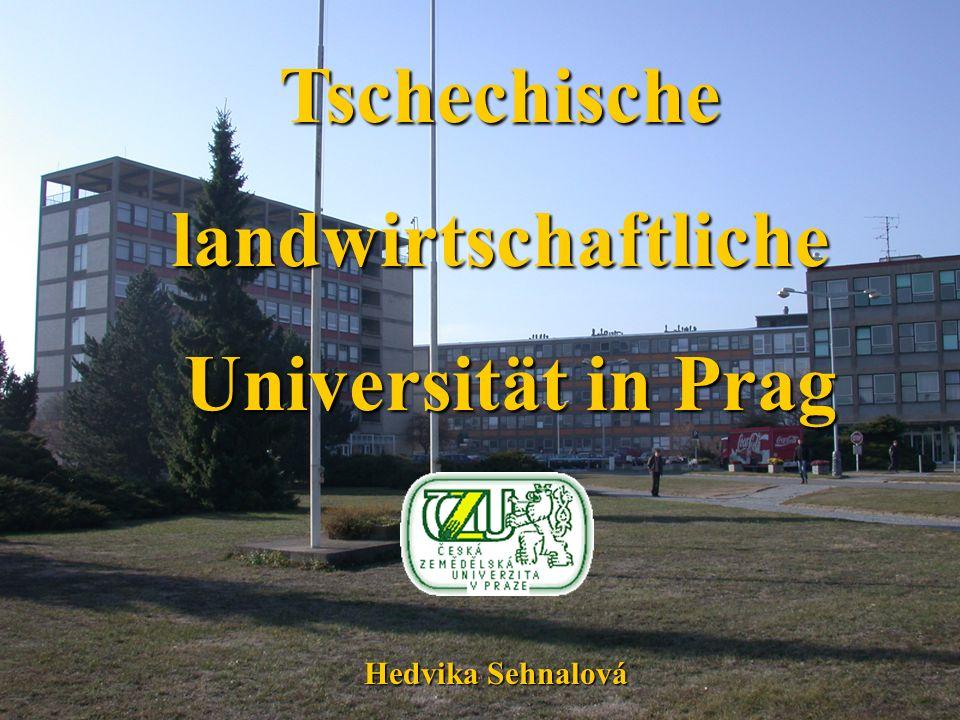 Tschechischelandwirtschaftliche Universität in Prag Universität in Prag Hedvika Sehnalová