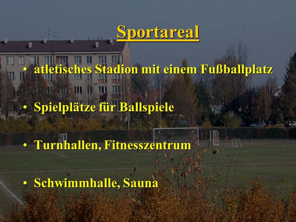 Sportareal atletisches Stadion mit einem Fußballplatzatletisches Stadion mit einem Fußballplatz Spielplätze für BallspieleSpielplätze für Ballspiele Turnhallen, FitnesszentrumTurnhallen, Fitnesszentrum Schwimmhalle, SaunaSchwimmhalle, Sauna