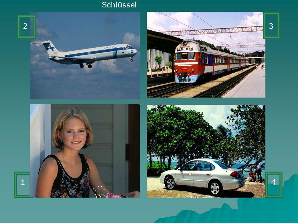 Meine Reise Ich will in diesem __________eine Reise unternehmen.