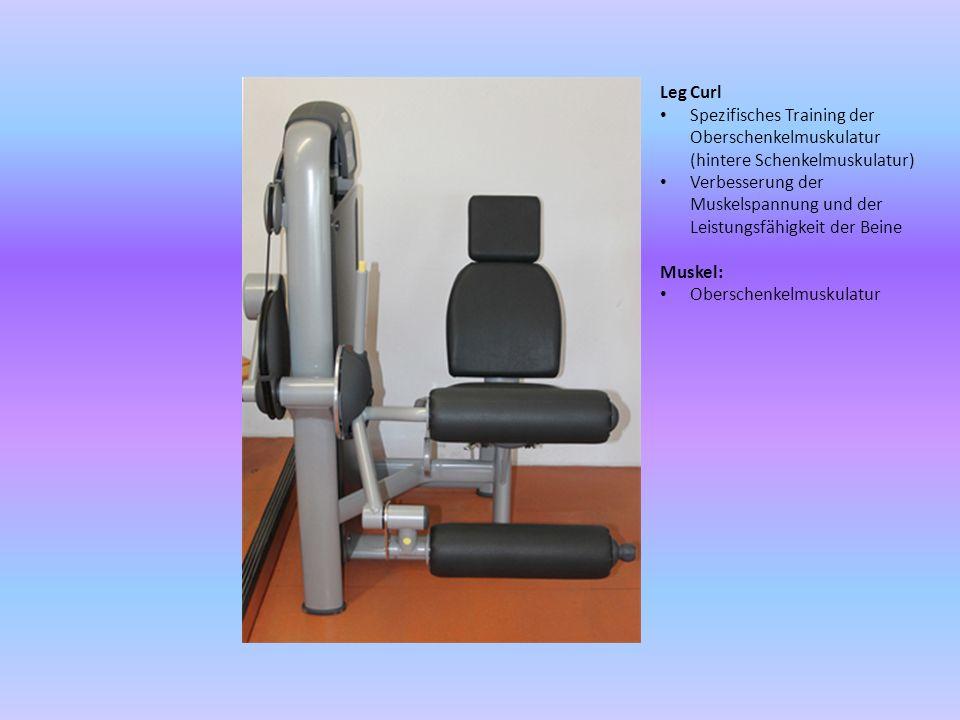 Leg Curl Spezifisches Training der Oberschenkelmuskulatur (hintere Schenkelmuskulatur) Verbesserung der Muskelspannung und der Leistungsfähigkeit der