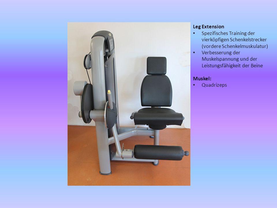 Leg Extension Spezifisches Training der vierköpfigen Schenkelstrecker (vordere Schenkelmuskulatur) Verbesserung der Muskelspannung und der Leistungsfä