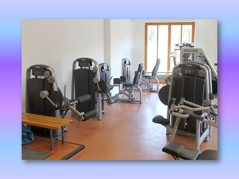 Leg Press Spezifisches Training des geraden Bauchmuskels Verbesserung der Haltung Muskeln: Quadrizeps Gesäßmuskeln Oberschenkelmuskulatur Zwillingswadenmuskel Schollenmuskel