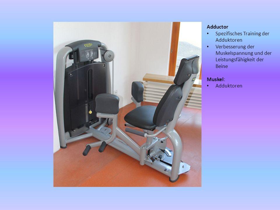Lower Back Spezifisches Training der Lendenmuskeln Verbesserung der Haltung Muskel: Lendenmuskel Sakrospinale Muskelgruppe