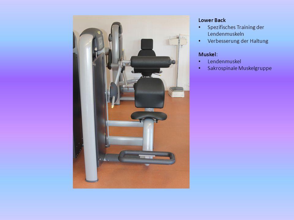 Chest Press Spezifisches Training des Brustmuskels und des Deltamuskels Stabilität des Schultergelenks Verbesserung von Gleichgewichtsproblemen der Arme Muskel: Brustmuskeln Deltoiden Trizeps