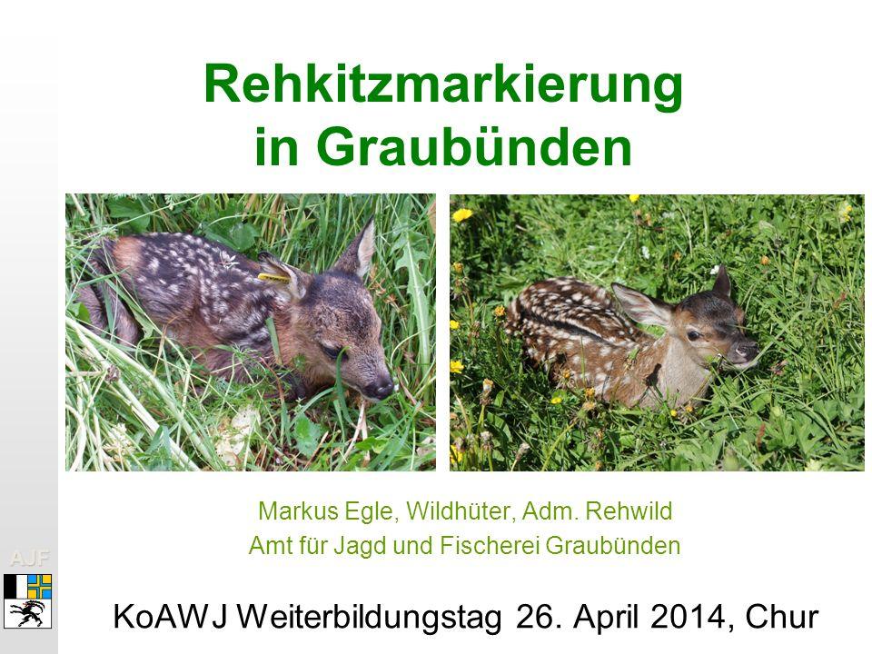 AJFAJF Rehkitzmarkierung in Graubünden Markus Egle, Wildhüter, Adm.