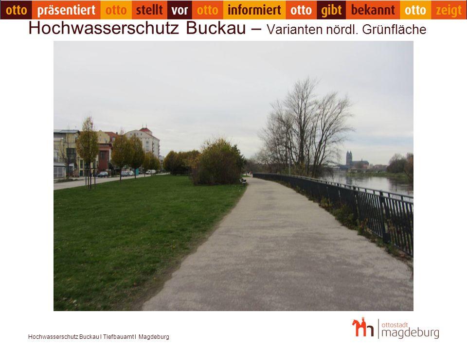 Hochwasserschutz Buckau I Tiefbauamt I Magdeburg Hochwasserschutz Buckau – Varianten nördl. Grünfläche