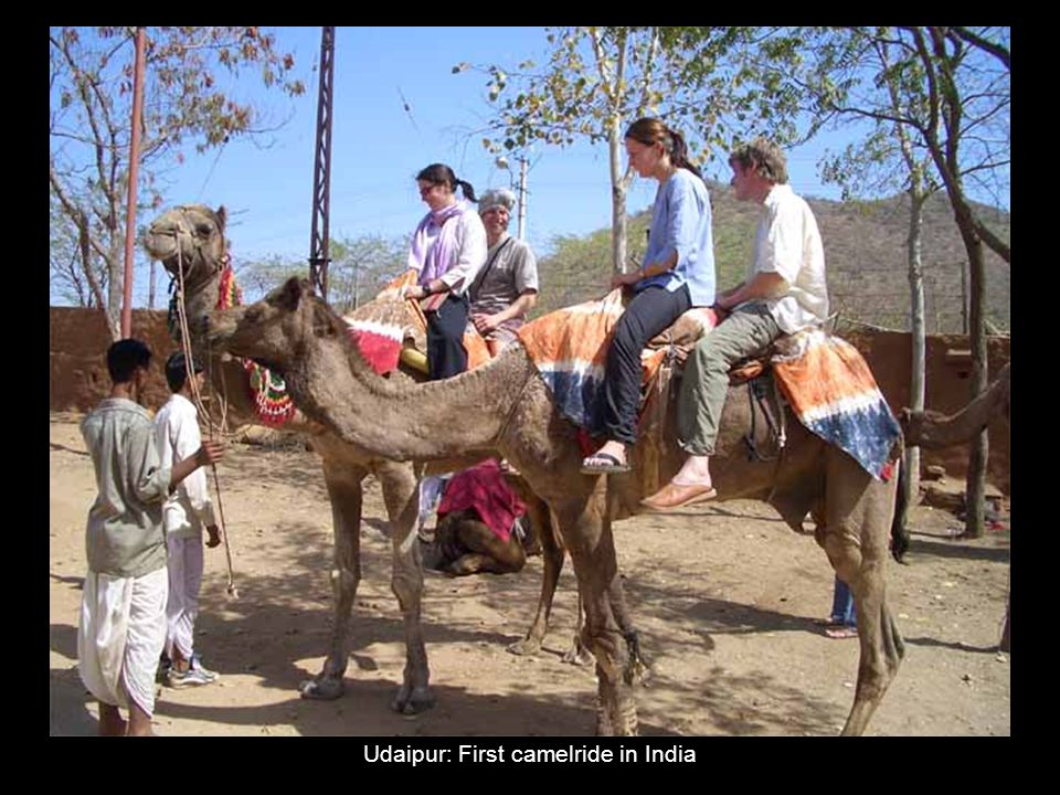 Udaipur: First camelride in India