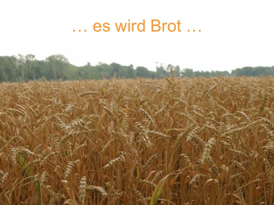 … es wird Brot …