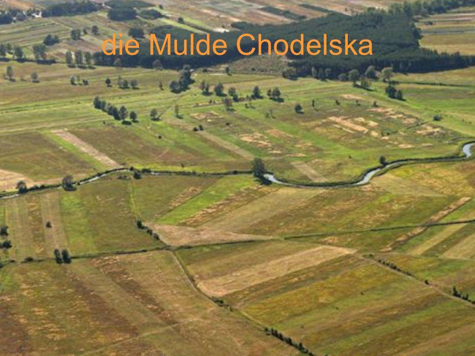 die Mulde Chodelska