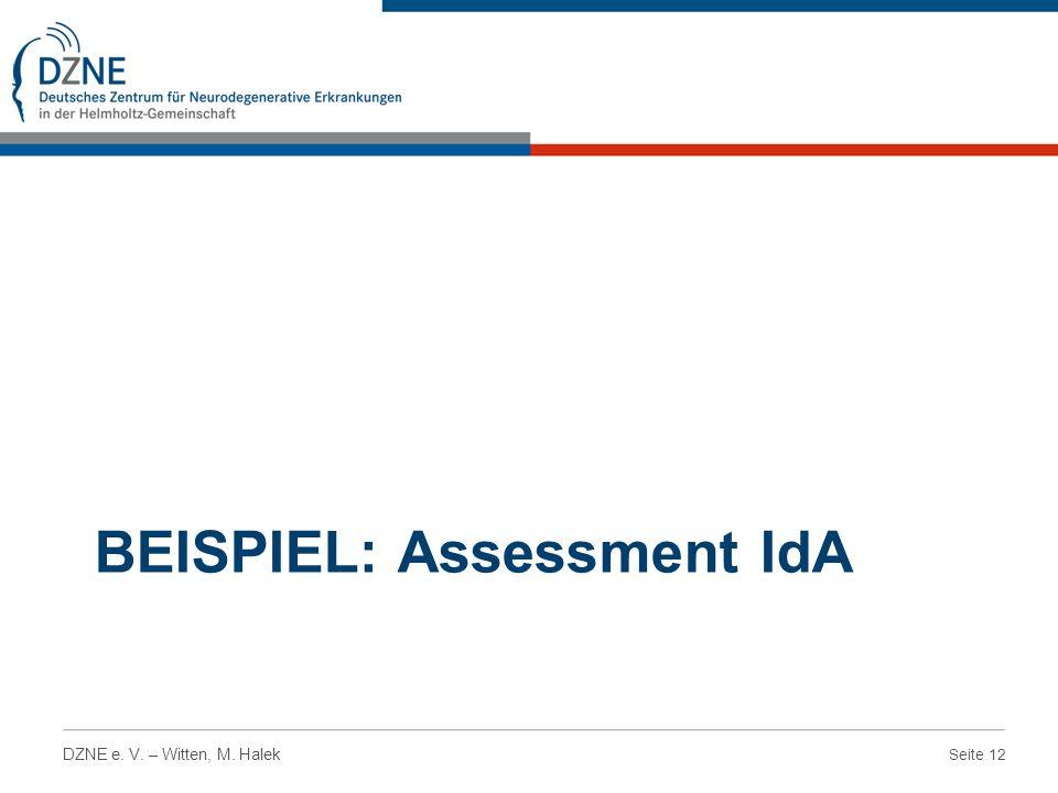 Seite 12 DZNE e. V. – Witten, M. Halek BEISPIEL: Assessment IdA