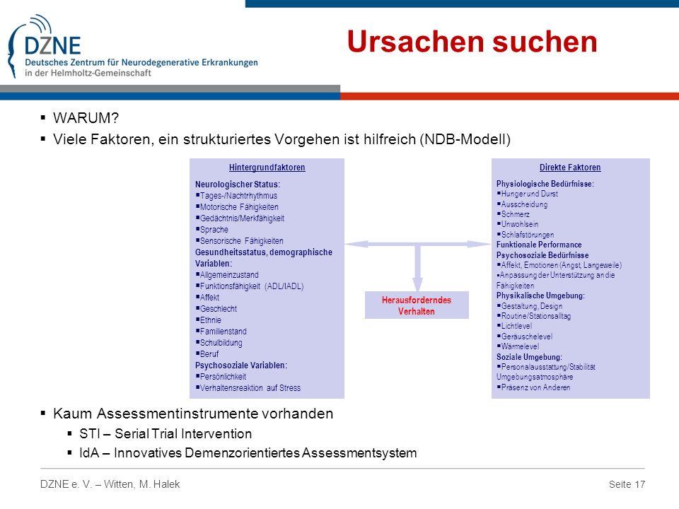 Seite 17 DZNE e. V. – Witten, M. Halek Ursachen suchen WARUM? Viele Faktoren, ein strukturiertes Vorgehen ist hilfreich (NDB-Modell) Kaum Assessmentin
