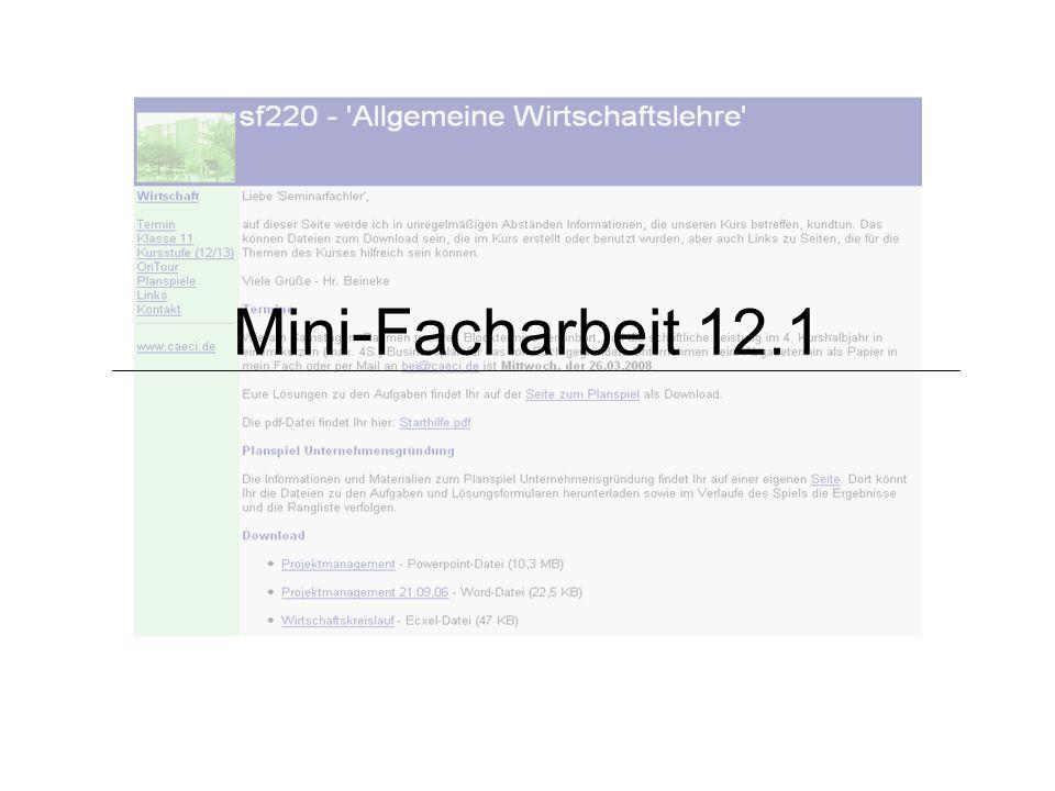 Mini-Facharbeit 12.1