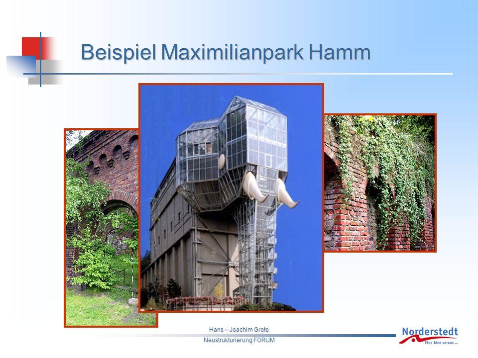 Hans – Joachim Grote Neustrukturierung FORUM Beispiel Maximilianpark Hamm
