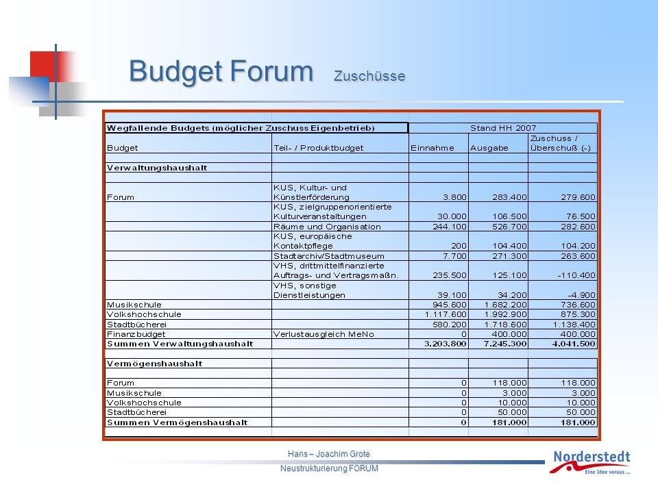 Hans – Joachim Grote Neustrukturierung FORUM Budget Forum Zuschüsse