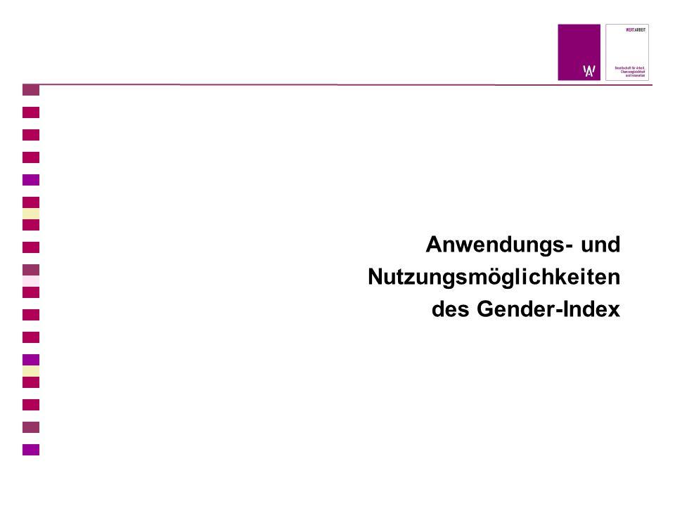 Anwendungs- und Nutzungsmöglichkeiten des Gender-Index
