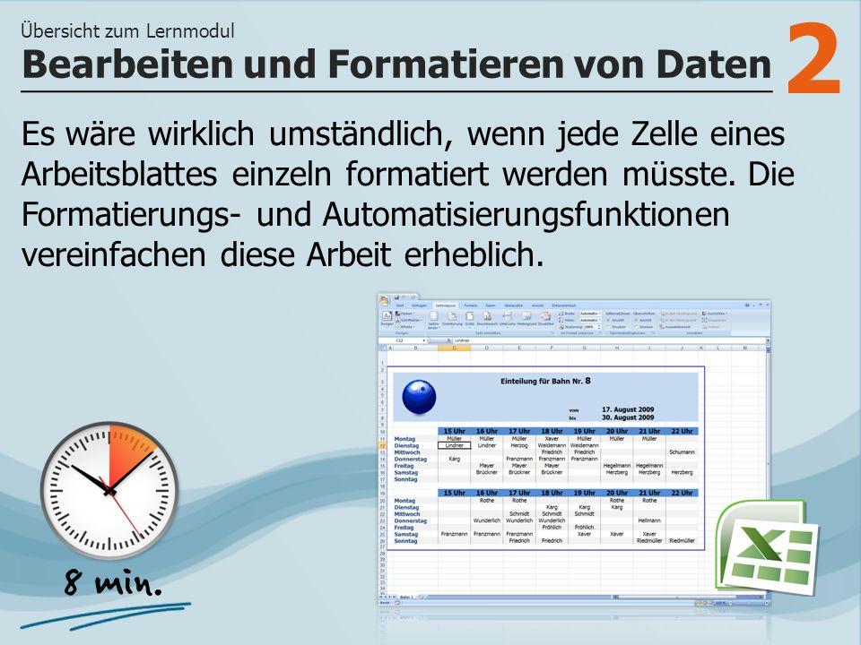 3 >> wie Sie Zellformatierungen für schnelleres Arbeiten anwenden und wie Sie Steuerelemente nutzen und z.