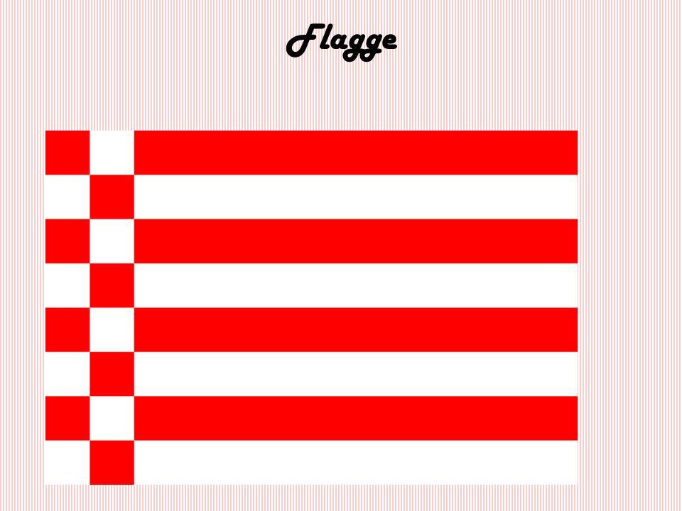 Staatsflagge am Rathaus