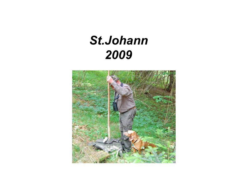 St.Johann 2009