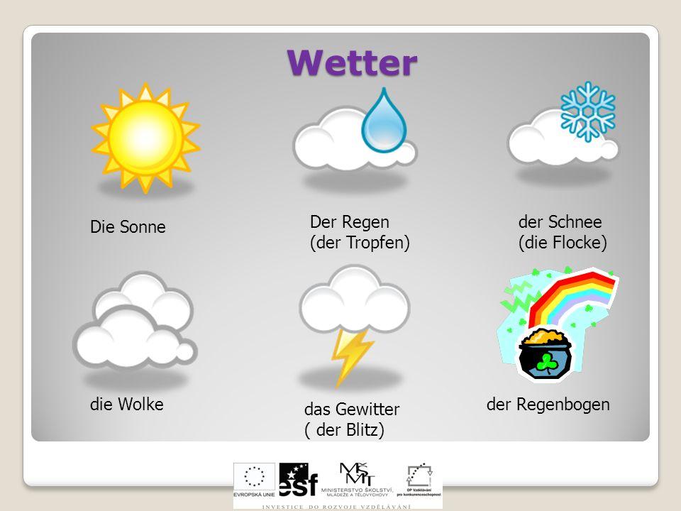 Wetter der Regenbogen das Gewitter ( der Blitz) die Wolke Die Sonne Der Regen (der Tropfen) der Schnee (die Flocke)