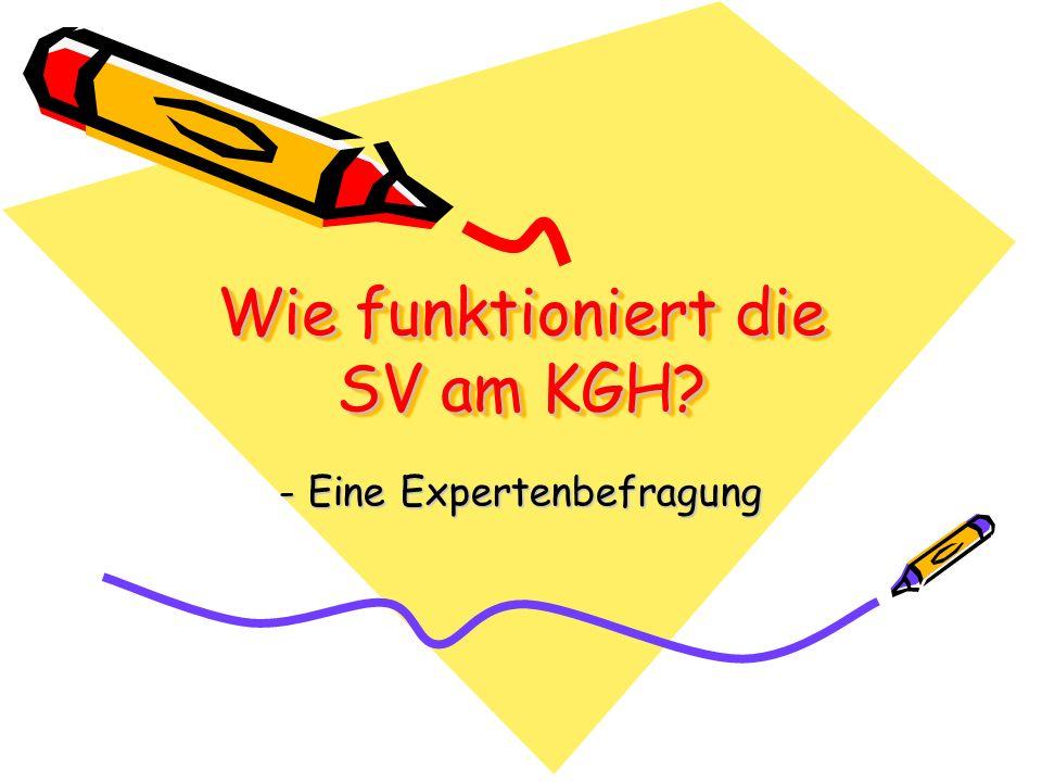 Wie funktioniert die SV am KGH? - Eine Expertenbefragung