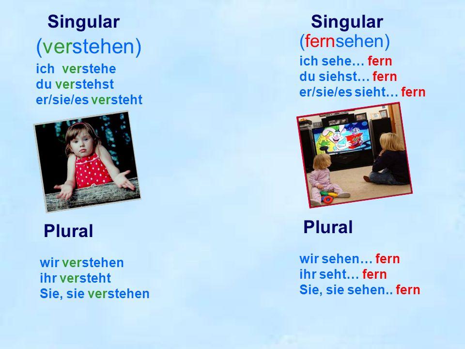ich verstehe du verstehst er/sie/es versteht wir verstehen ihr versteht Sie, sie verstehen Singular Plural Singular (verstehen) (fernsehen) ich sehe…