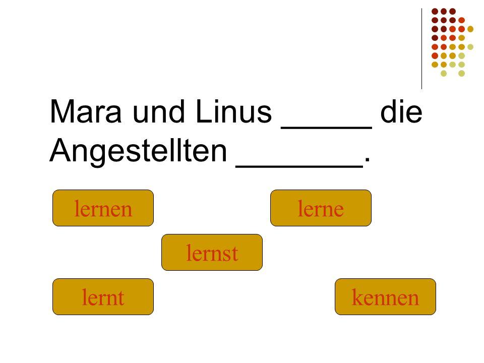 Mara und Linus _____ die Angestellten _______. kennenlernt lernst lernenlerne