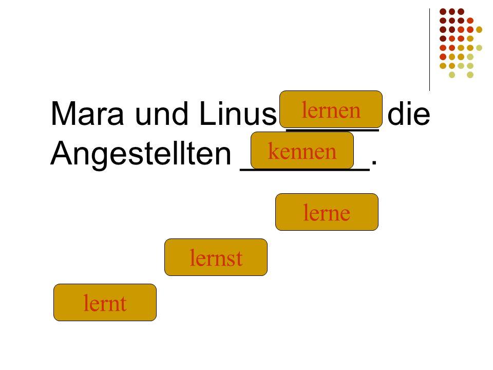 Mara und Linus _____ die Angestellten _______. kennen lernt lernst lernen lerne