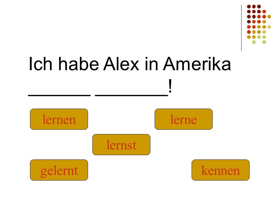 Ich habe Alex in Amerika ______ _______! kennengelernt lernst lernenlerne