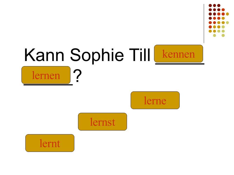 Kann Sophie Till _____ _____ kennen lernt lernst lernen lerne