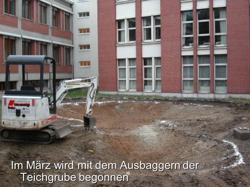 Der Schulgarten ist fertig, aber auch wieder nicht, er bietet noch viel Platz für weitere Projekte & Ideen