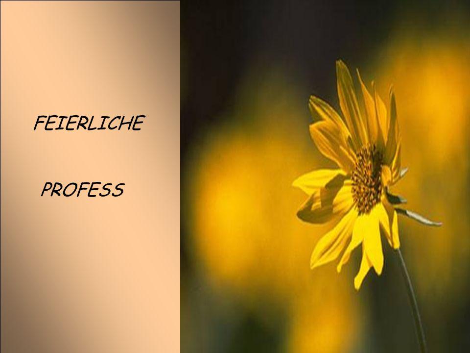 PROFESS FEIERLICHE