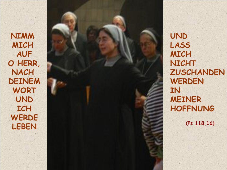 NIMM MICH AUF O HERR, NACH DEINEM WORT UND ICH WERDE LEBEN UND LASS MICH NICHT ZUSCHANDEN WERDEN IN MEINER HOFFNUNG (Ps 118,16)