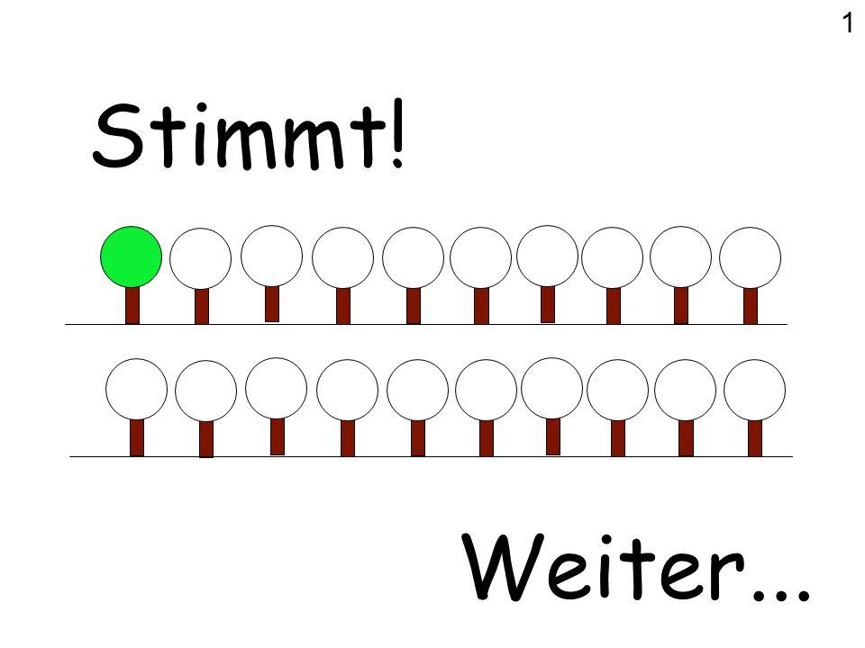 Was ist richtig? Fotos: www.baumkunde.de Hasel? Rosskastanie? Buche? (Rot-Buche) 18