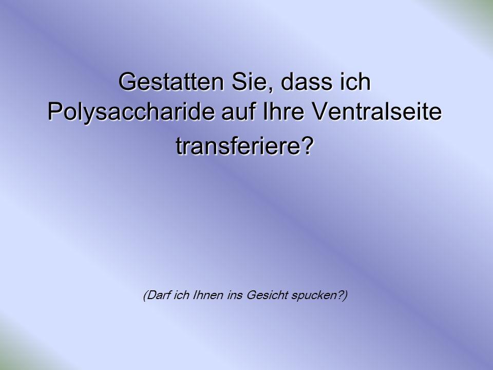 Gestatten Sie, dass ich Polysaccharide auf Ihre Ventralseite transferiere? Gestatten Sie, dass ich Polysaccharide auf Ihre Ventralseite transferiere?