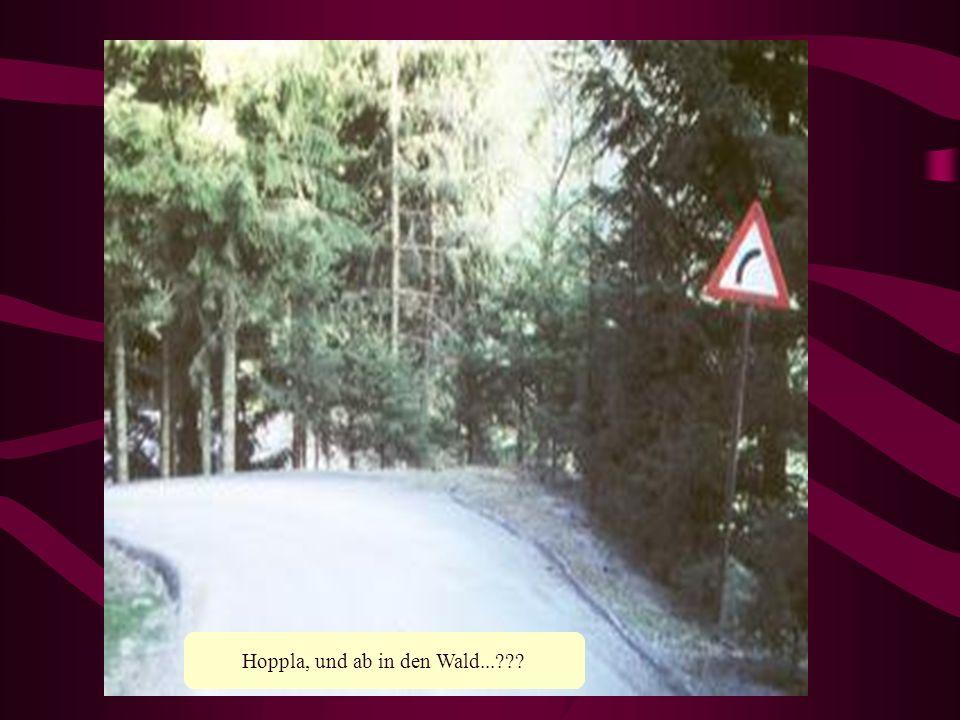 Hoppla, und ab in den Wald...
