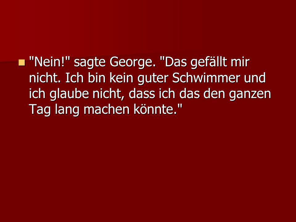 Nein! sagte George. Das gefällt mir nicht.