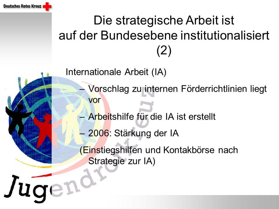 Die strategische Arbeit ist auf der Bundesebene institutionalisiert (2) Internationale Arbeit (IA) –Vorschlag zu internen Förderrichtlinien liegt vor –Arbeitshilfe für die IA ist erstellt –2006: Stärkung der IA (Einstiegshilfen und Kontakbörse nach Strategie zur IA)