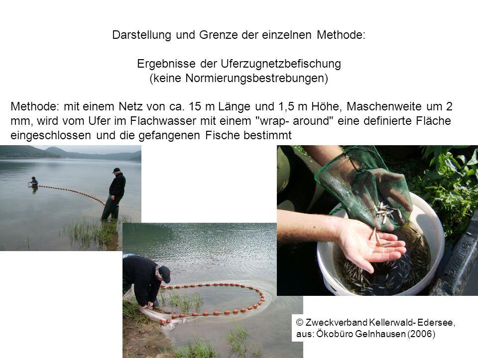 Darstellung und Grenze der einzelnen Methode: Ergebnisse der Uferzugnetzbefischung (keine Normierungsbestrebungen) Methode: mit einem Netz von ca. 15