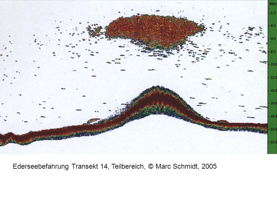 Ederseebefahrung Transekt 14, Teilbereich, © Marc Schmidt, 2005