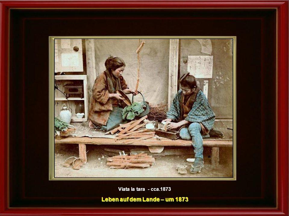 Vinzator ambulant - cca.1892-96 Ambulanter Händler – um 1892-1896