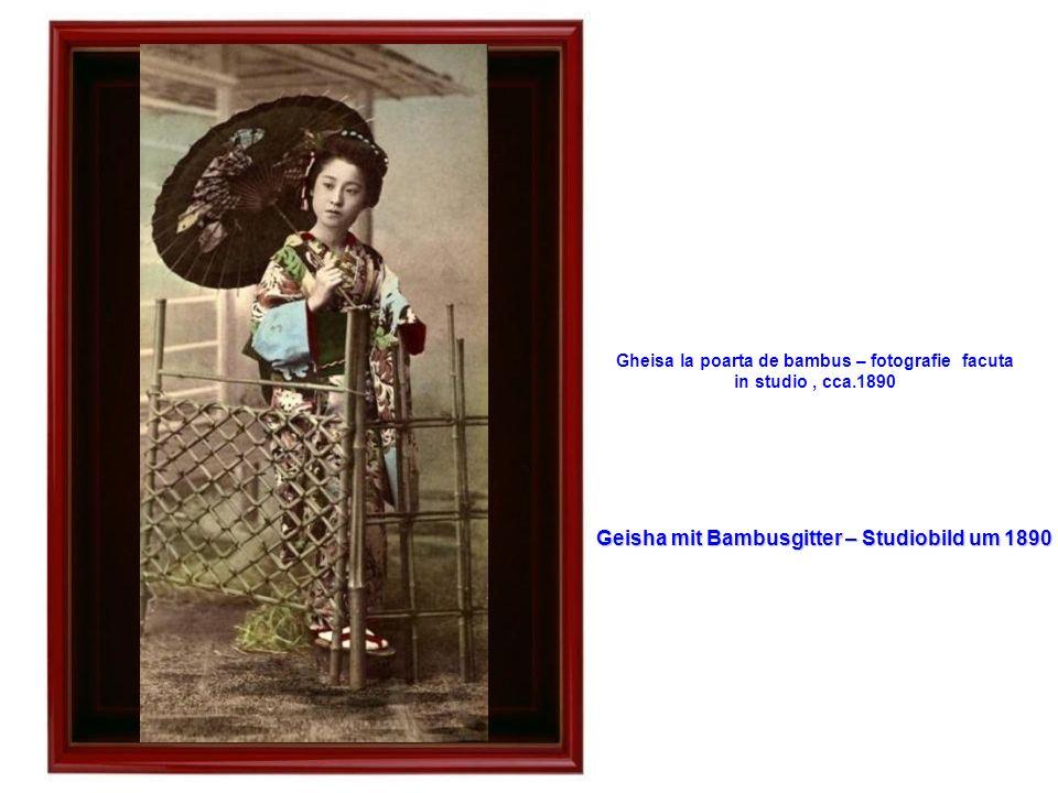 Magazinul de matasuri - cca.1870 Seiden-Lager – um 1870