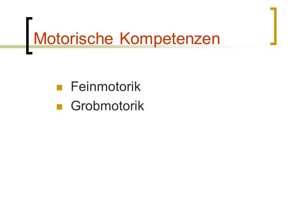 Motorische Kompetenzen Feinmotorik Grobmotorik