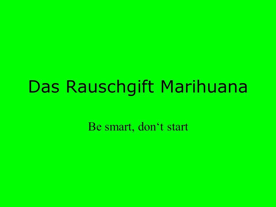 Das Rauschgift Marihuana Be smart, dont start
