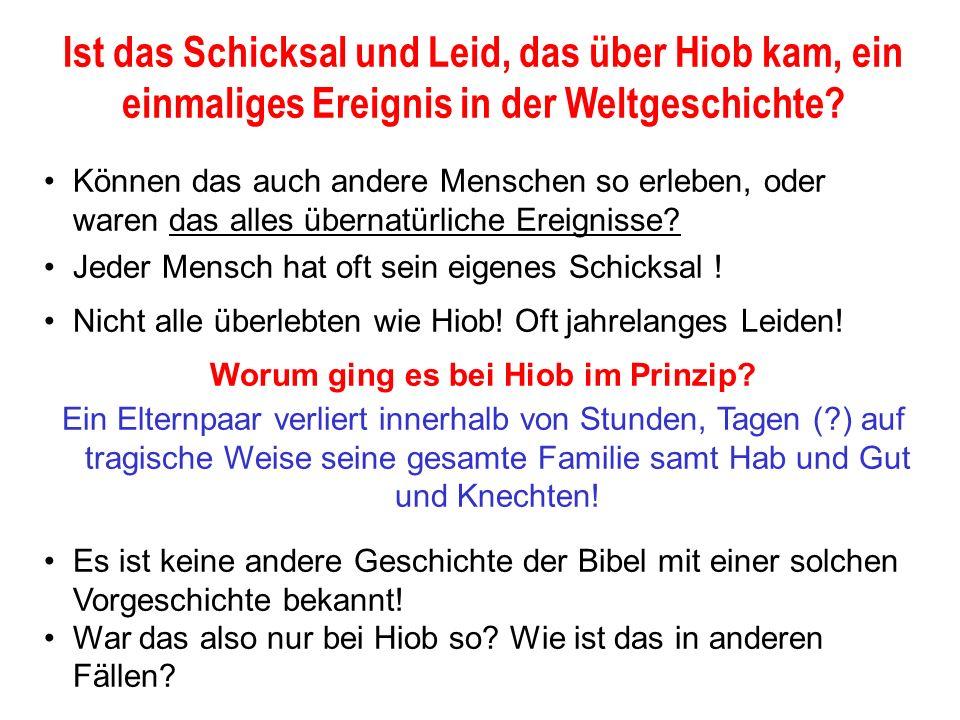 Seite 29 PP_M54.ppt Hiob – Folien Teil 2www.hopeandmore.at Das Beispiel von E.G.