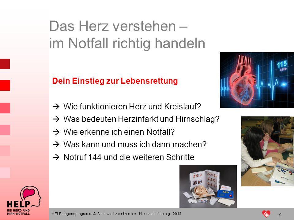 2 HELP-Jugendprogramm © S c h w e i z e r i s c h e H e r z s t i f t u n g 2013 Dein Einstieg zur Lebensrettung Wie funktionieren Herz und Kreislauf?