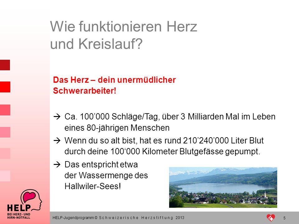 5 HELP-Jugendprogramm © S c h w e i z e r i s c h e H e r z s t i f t u n g 2013 Das Herz – dein unermüdlicher Schwerarbeiter! Ca. 100000 Schläge/Tag,